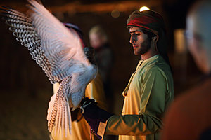 Third International Falconry Festival