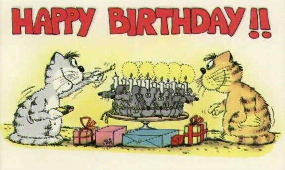http://www.oook.cz/funny_stuff/kocici-narozeniny.jpg