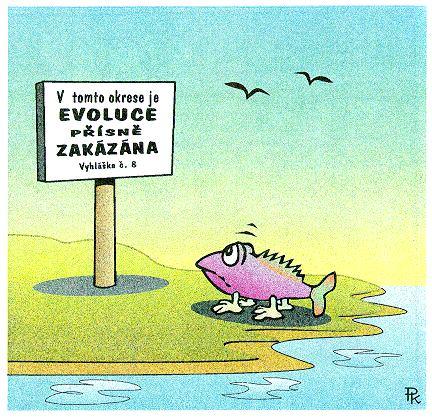 http://www.oook.cz/kantorek/54_evoluce.jpg